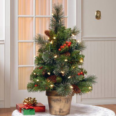Loon Peak Gold Hill Spruce 2' Green Small Artificial Christmas Tree with Clear Lights | Birch Lane