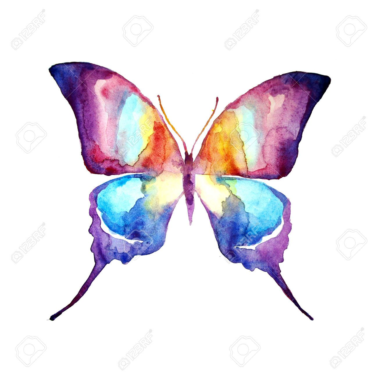 Butterfly watercolor design stock photo picture and for Watercolor painting images