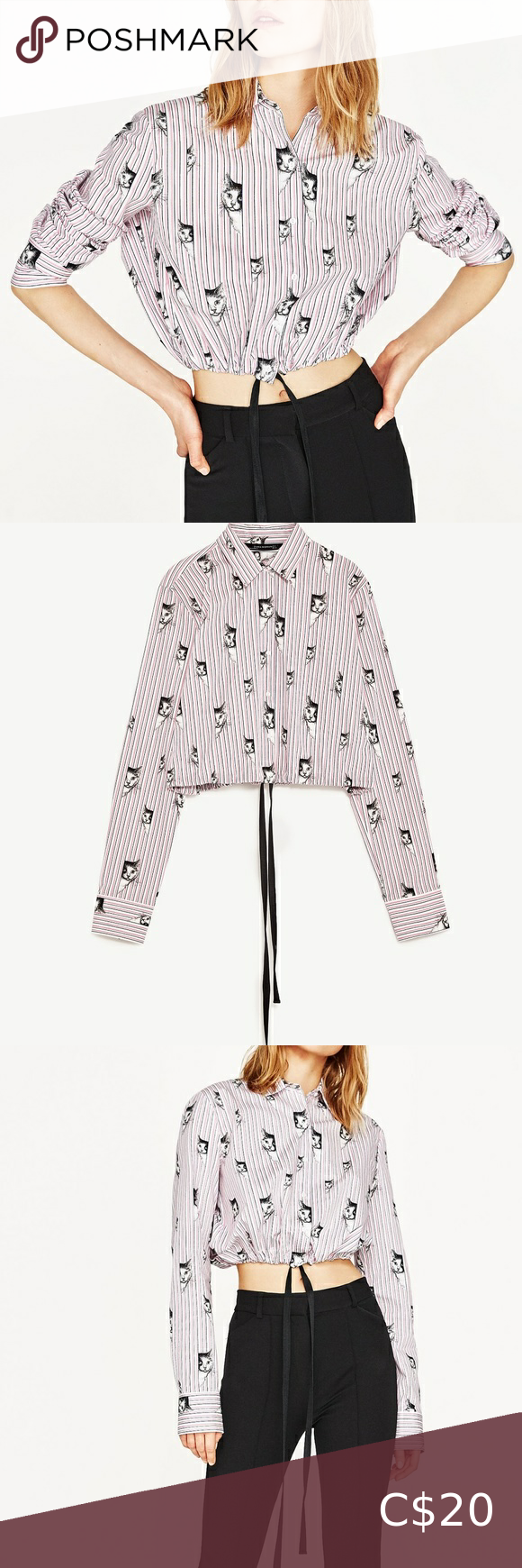 Zara Kitty Cat Print Striped Cropped Shirt Top S in 2020