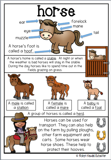 cb716e73fb Farm Animal themed posters / anchor charts. Posters for horse, sheep, pig,