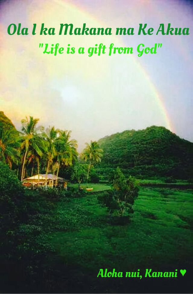 Hawaiian saying | Hawaiian quotes, Hawaiian phrases, Hawaii ...
