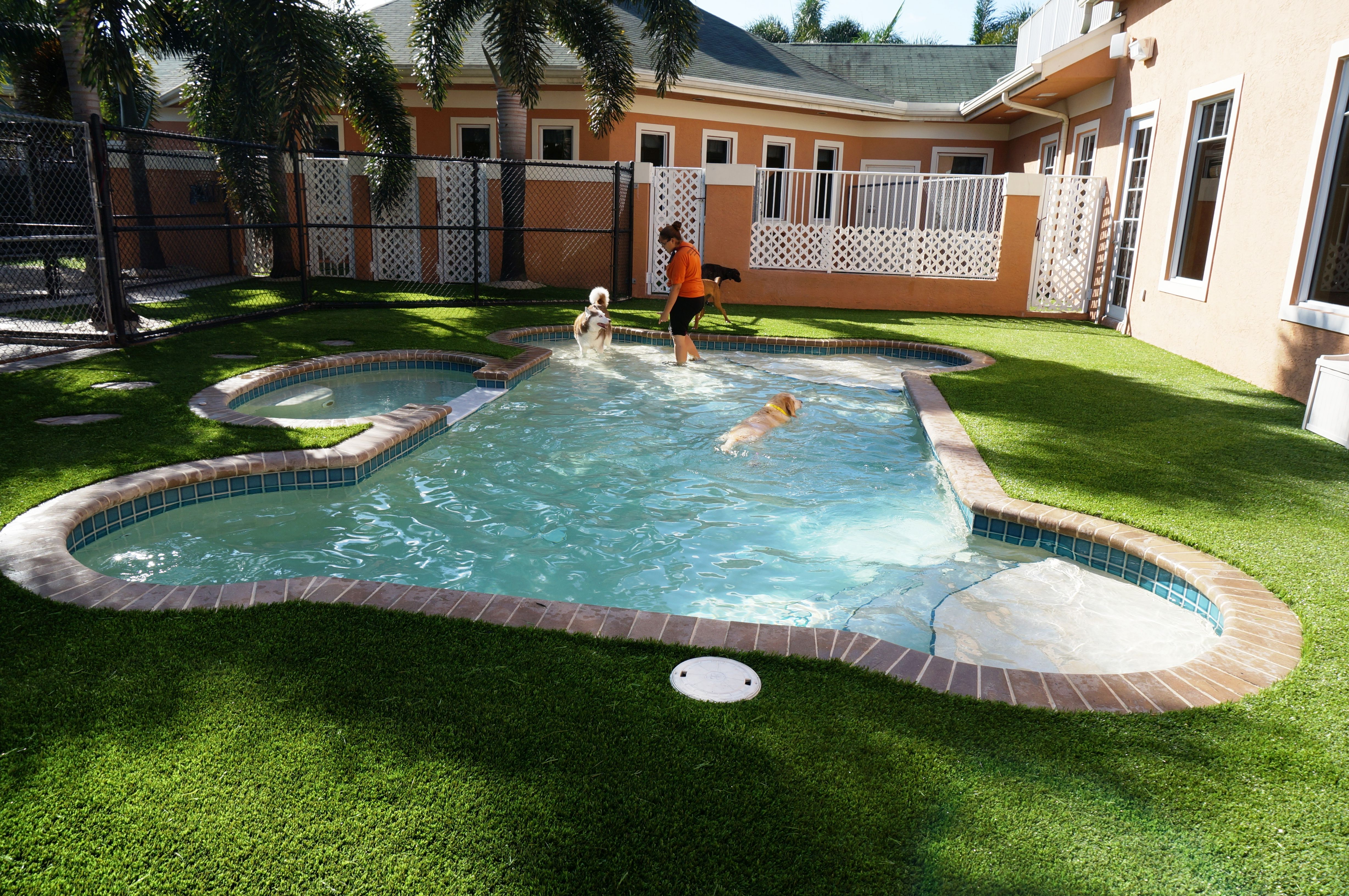 Check out our latest installation at Cesar Millan's Dog Psychology Center in Florida! This is the ultimate dog retreat. www.easyturf.com l outdoor living l pet grass l dog grass l dog friendly backyard l dog whisperer