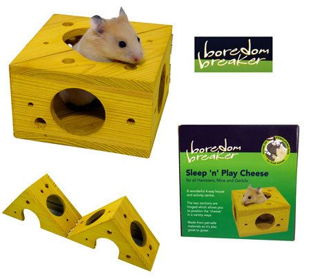 Remember Your Hamster Needs Toys To Keep It Busy Hamster Pet Rodents Small Pets