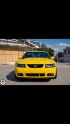 Terminator Mustang 2020