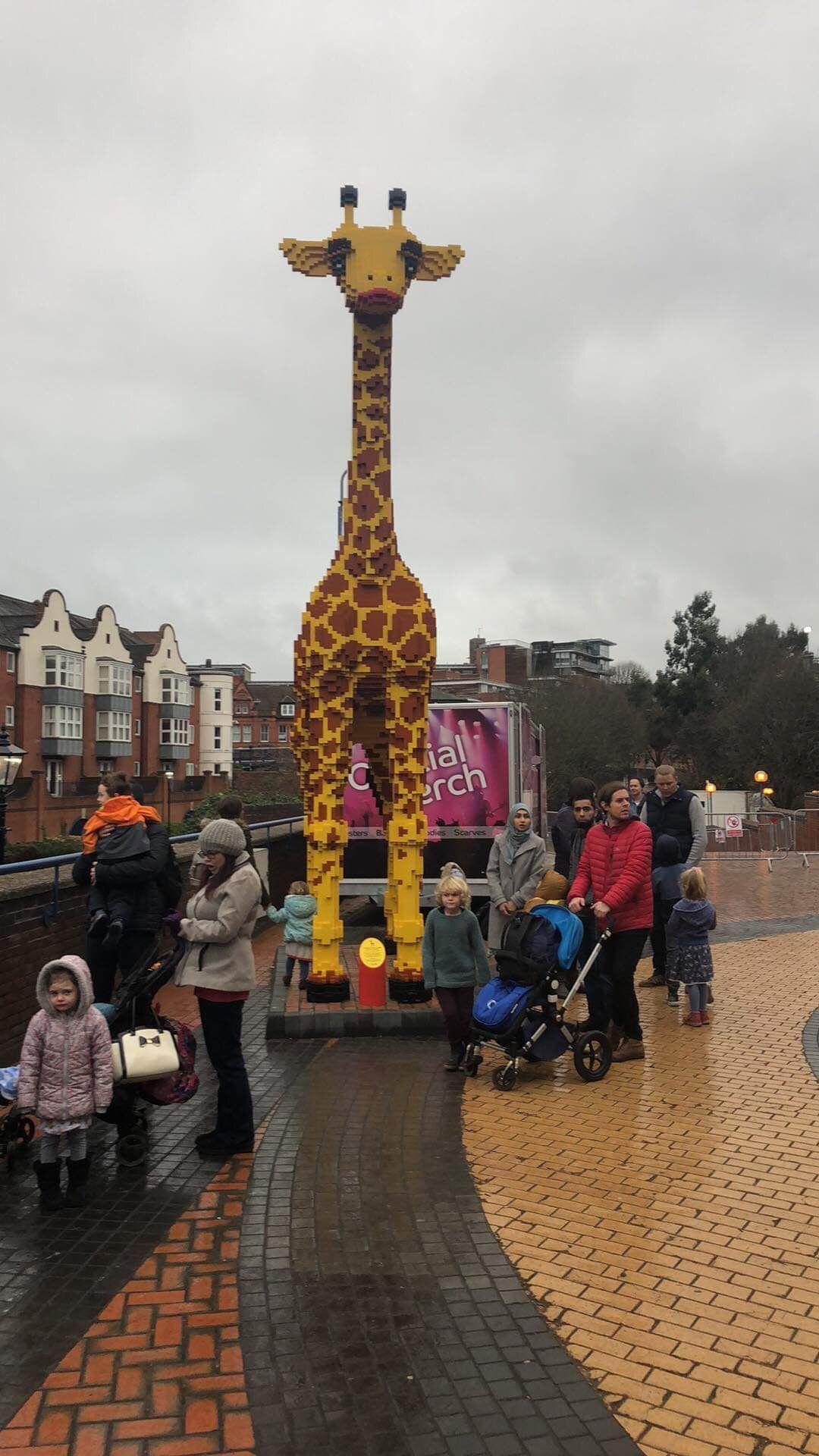 Pin By Sophia Oden On Giraffe Love