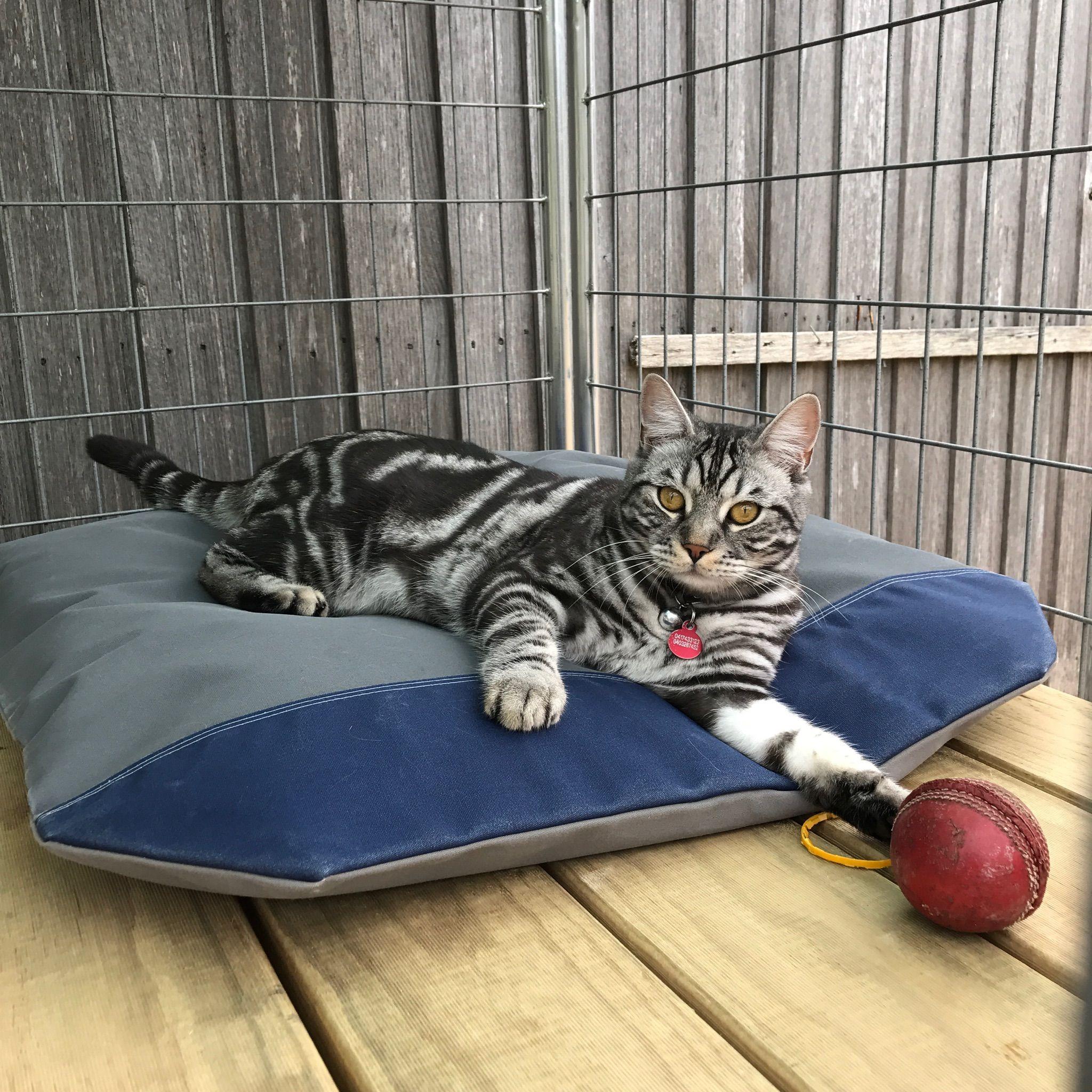 Coopers Per Covers Super tough Pet Beds That's one big Cat