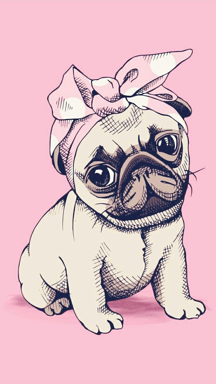 Pin by Neo. O. Scheepers on Rea | Pugs, Dog wallpaper, Pug ...