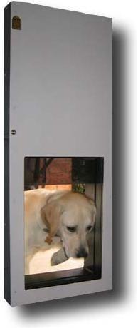 Photo Solo Automatic Opening Pet Door Dog Door Pet Doors Automatic Dog Door