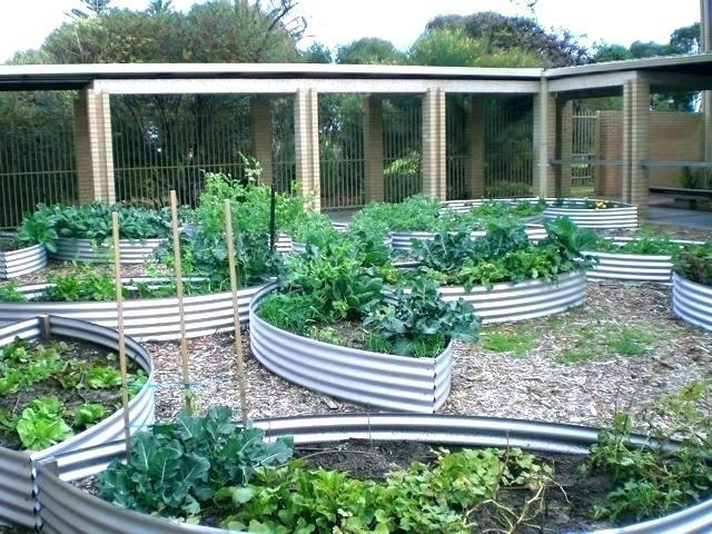 Galvanized Raised Garden Bed Corrugated Raised Garden Beds 640 x 480