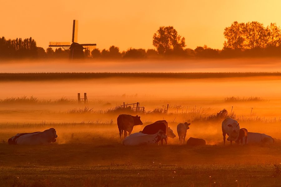 Dutch Mountains by Roeselien Raimond on 500px