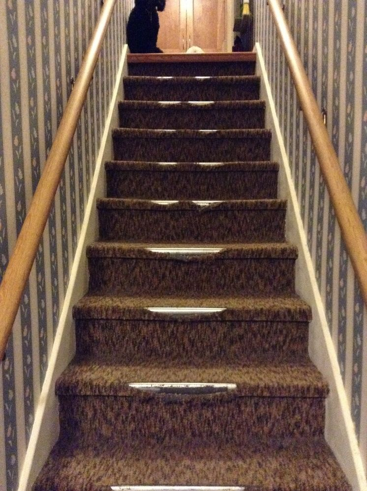 Best Removing Indoor Outdoor Carpet From Stairs Outdoor 640 x 480