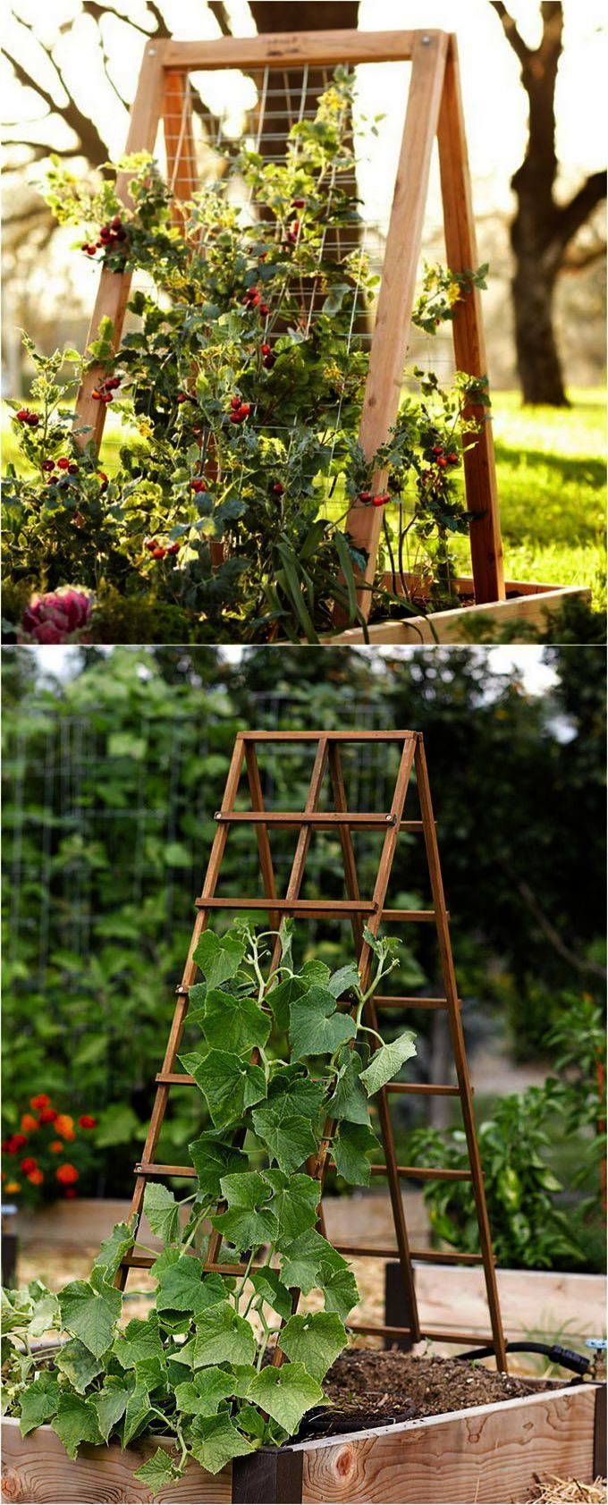 Good Pic Raised Garden Bed australia Ideas Elevated boxes