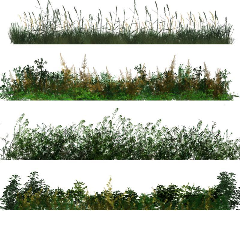 50 photoshop brushes of dynamic vegetation 2 parchi for Gartengestaltung 3d planer