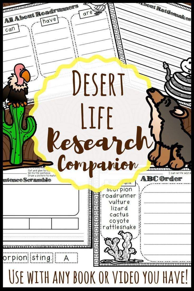 Desert Animals Activities and Report Elementary writing
