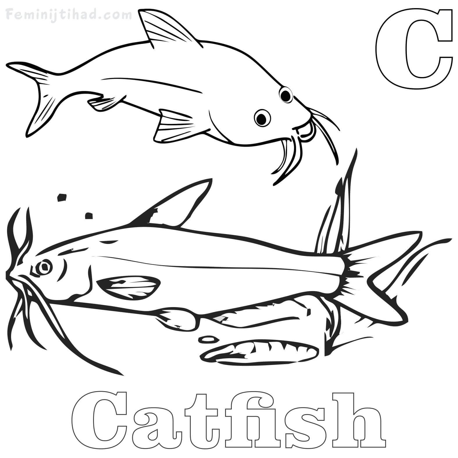 Catfish Coloring Pages Printable For Free Animal Coloring Pages Coloring Pages Catfish