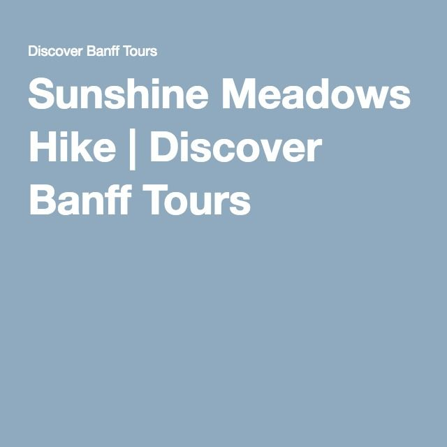 Sunshine Meadows Hike | Discover Banff Tours