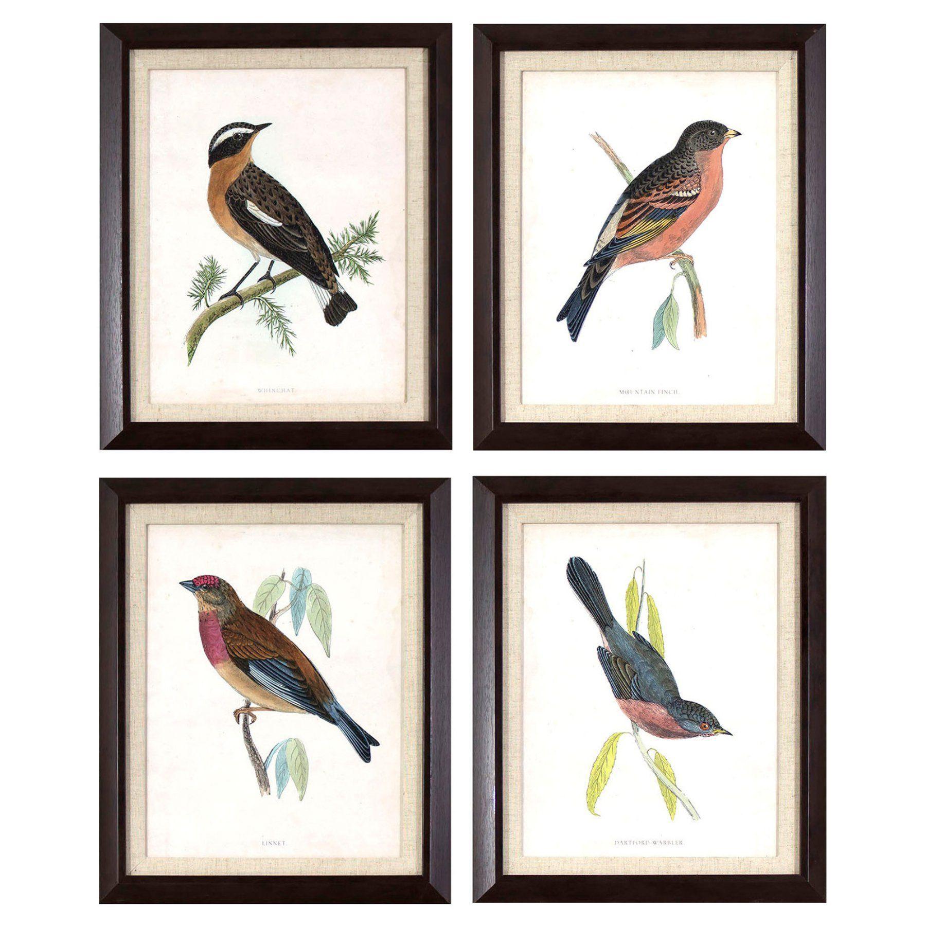 Decor Therapy Antique Bird Studies In Dark Wood Grain Frame