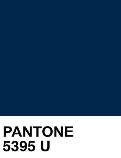 Pantone Navy Blue Swatch