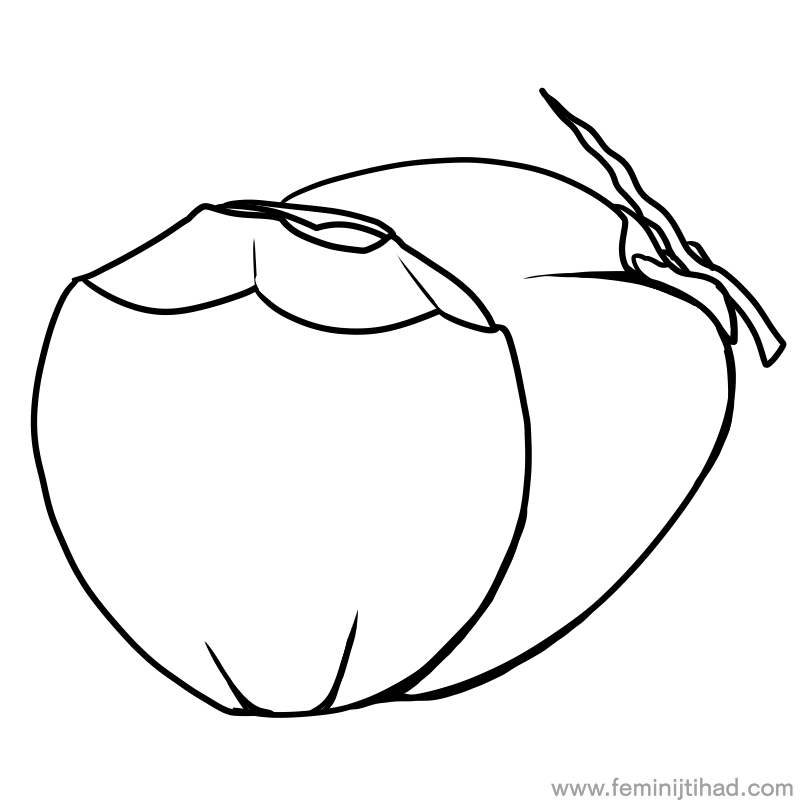 Coconut Coloring Pages Printable