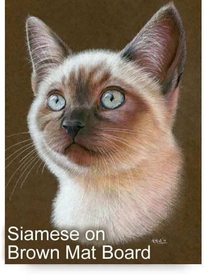 Siamese Cat Colored Pencil Project Kit Instant Digital Download Colored Pencil Animal Cat Realistic Drawings Color Pencil Art Whimsical Art