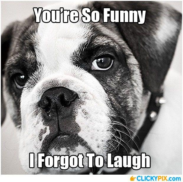 Hahaha Not Funny Meme : You re not funny serious face meme pinterest