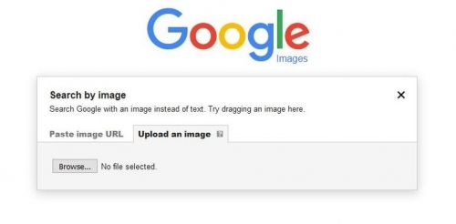 Here S Why You And Your Business Should Use Reverse Image Search