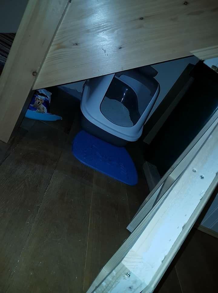 Cat litter tray hidden understairs storage cat litter