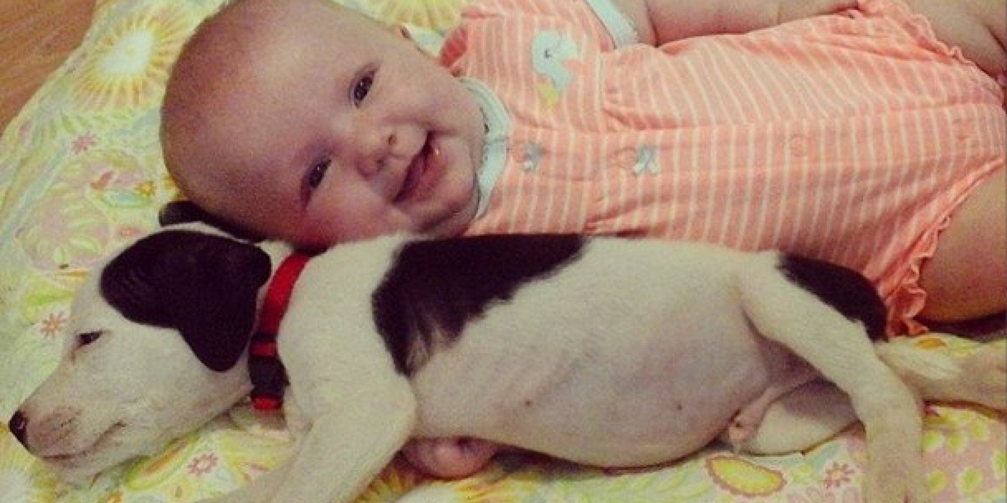 Baby And Pit Bull Puppy Are The Cutest Best Friends You ll See