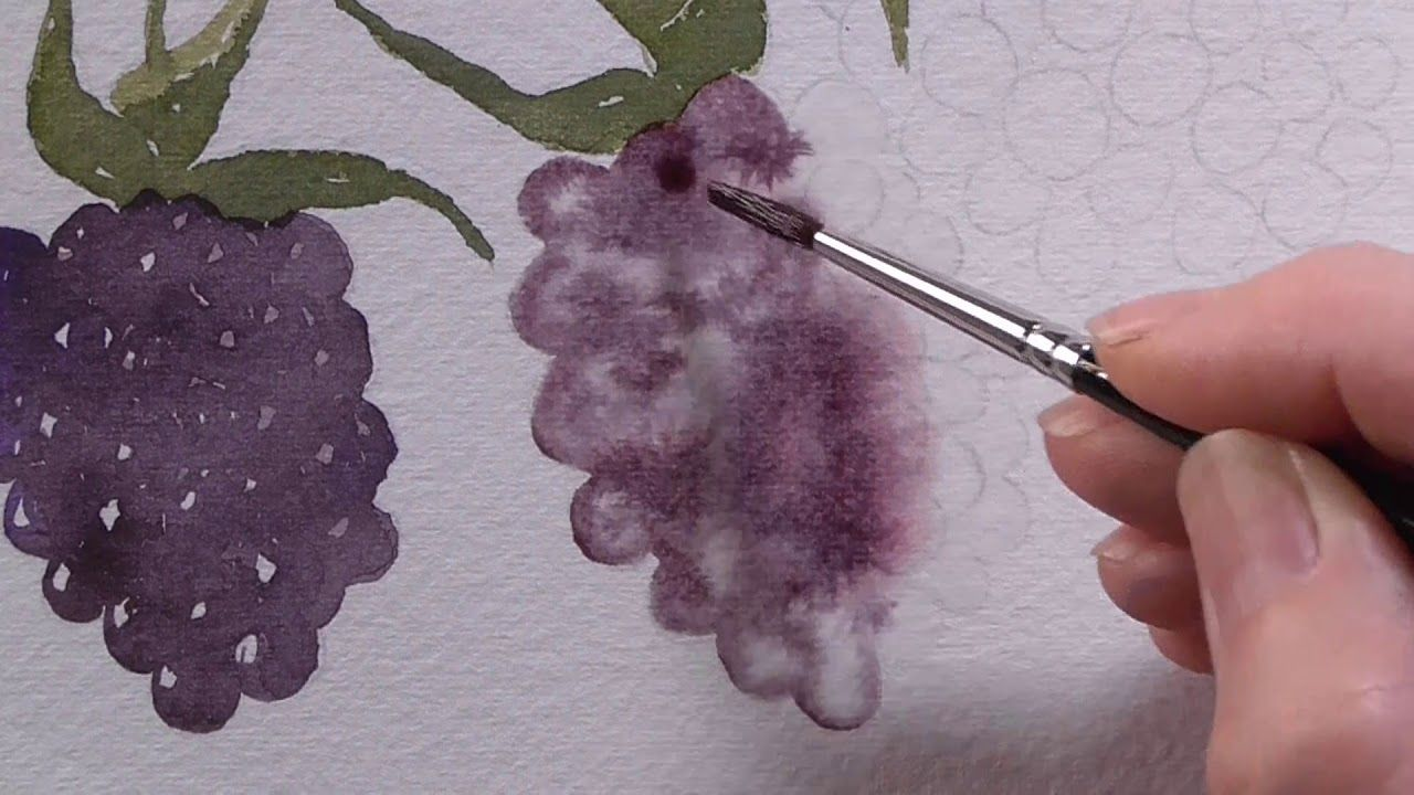 Watercolour Zen Quietly Study These Juicy Blackberries And Paint