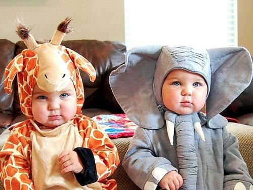 Chubby Baby Halloween Costumes.Pin On Parenting
