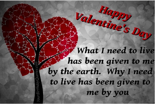 valentines day funny & humorous sayings for him and her - happy, Ideas