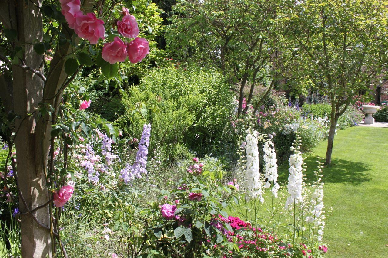 Watergate House Canterbury Kent Ct2 0db National Garden Scheme Dream Garden Garden Country Gardening