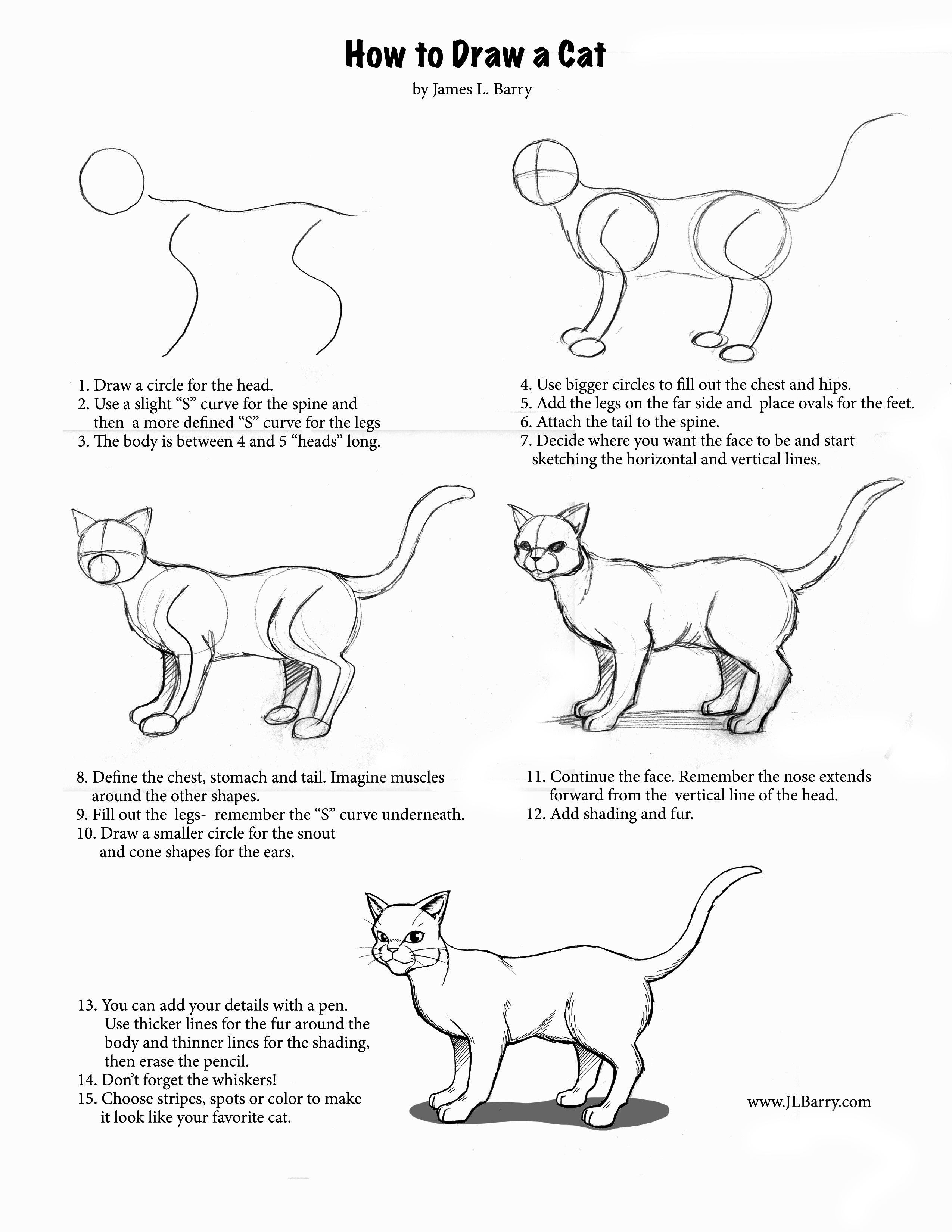How To Draw A Cat Warrior Cat Drawings Cat Drawing Tutorial Animal Drawings