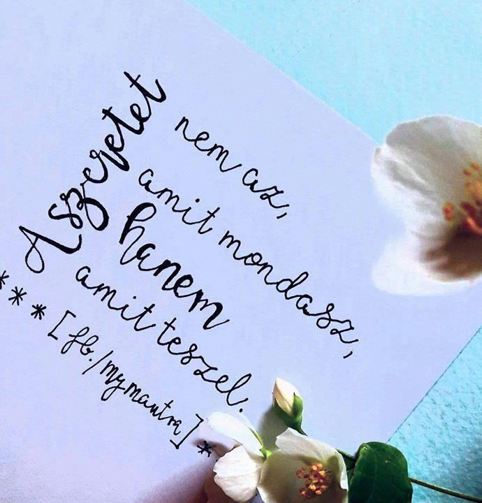 hála idézetek bölcsességek akvarell képek   inspiráló és pozitív #idézetek #gondolatok