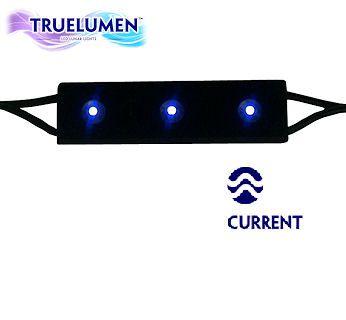 Current Usa True Lumen Led Lunar Light Module 3 Led 453 Blue Power Supply Sold Separately Http Www Aquacave Com Led Aquarium Lighting Aquarium Lighting Led