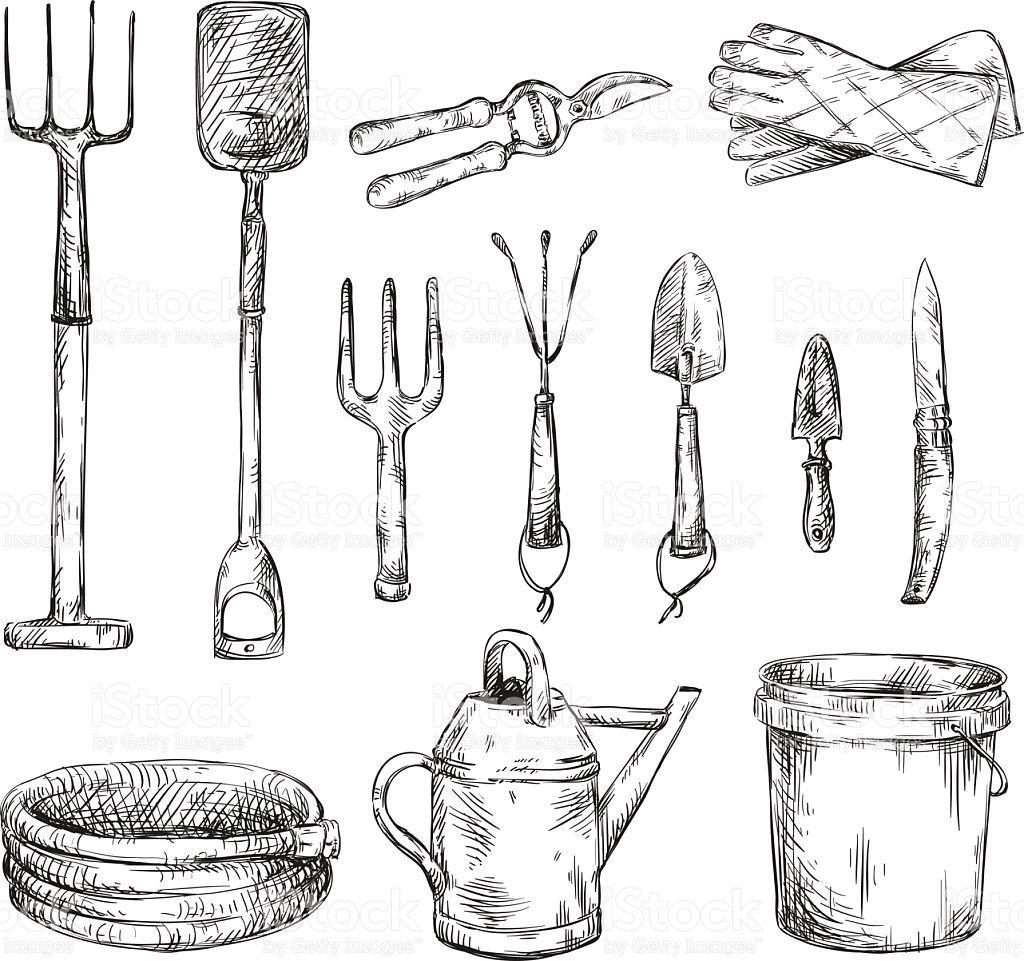 Set Of Gardening Tools Drawings Vector Illustration Eps 10 Herramientas De Jardineria Herramientas De Jardin Dibujos