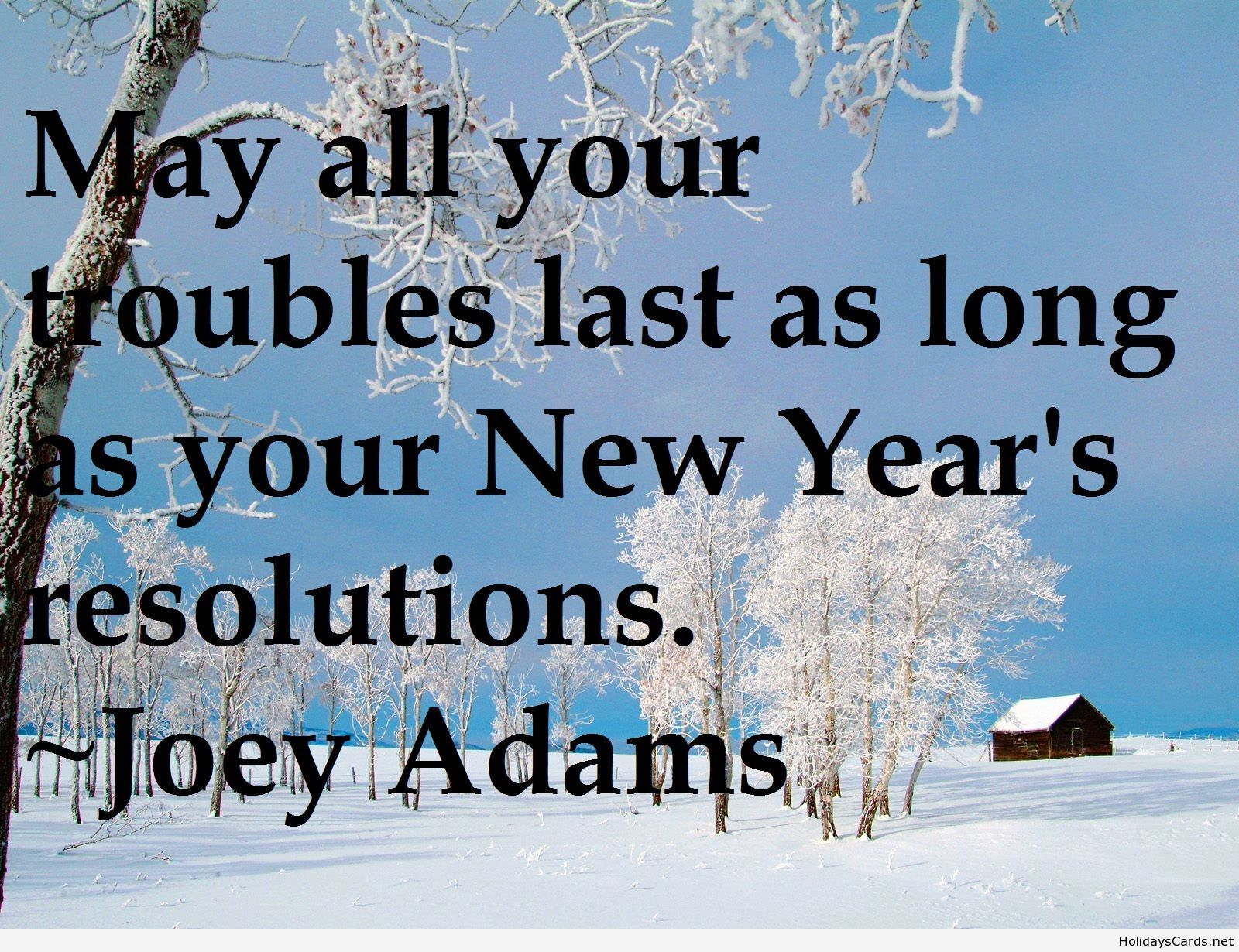 Funny New Year Wallpaper Quote