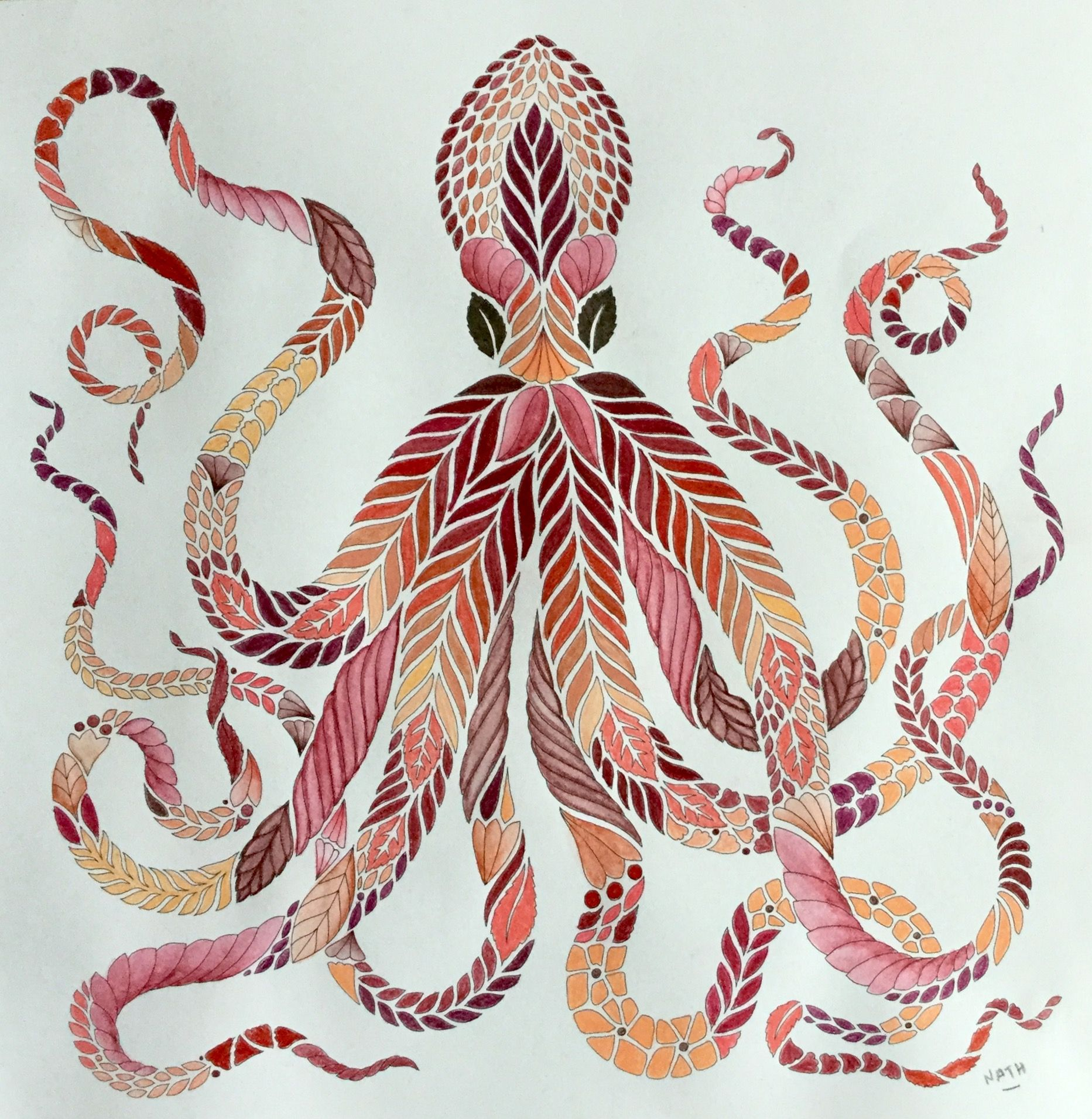 My Coloring Millie Marotta Curious Creatures Octopus Pieuvre Mimicoctopus