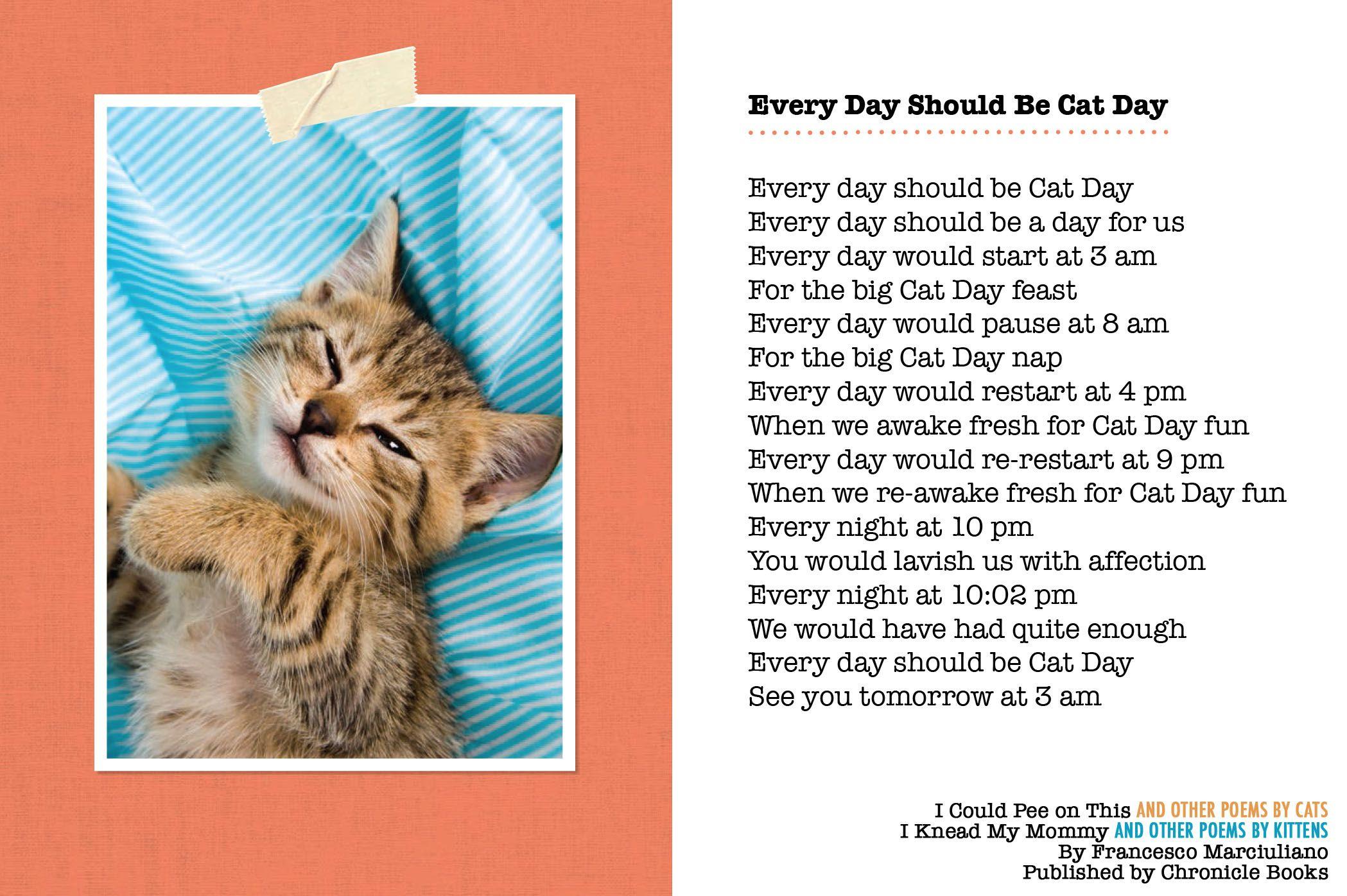 Happy National Cat Day National Cat Day Cat Day Cats