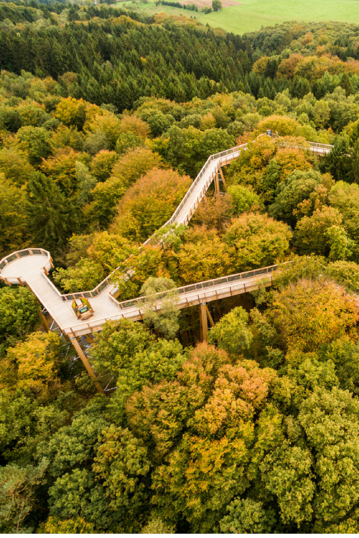 Baumwipfelpfad Naturerlebnispark Panarbora Nrw Ausflug Nrw Baumwipfelpfad Reisen