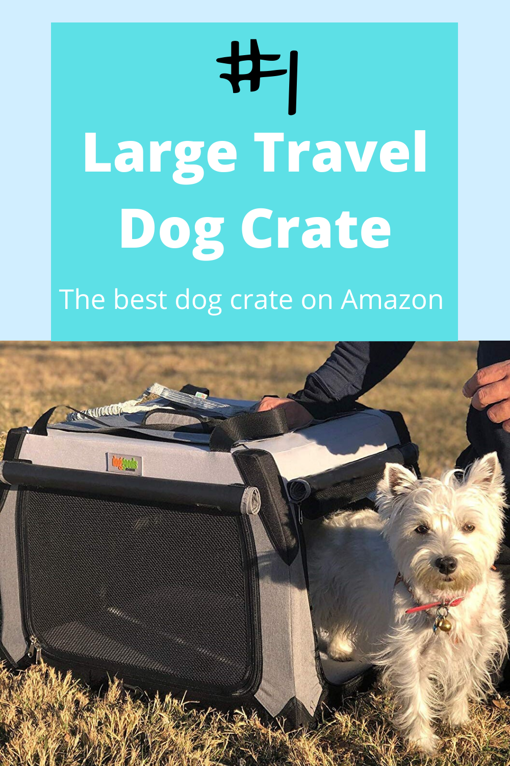 Dog Travel Crate Review Large Dog Crate in 2020 Dog
