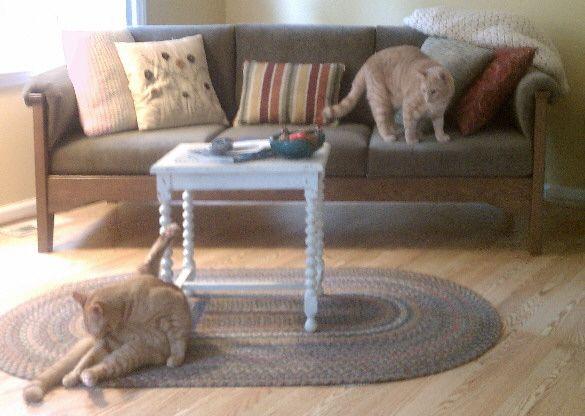 Pet Resistant Cat Or Dog Friendly Furniture Sofas And Chairs Dog Friendly Furniture Cat Proof Couch Upholstered Dog Bed