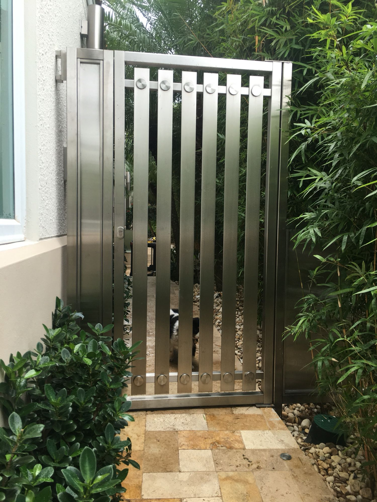 Stainless steel gate my work 2 pinterest steel gate for Residential main door design