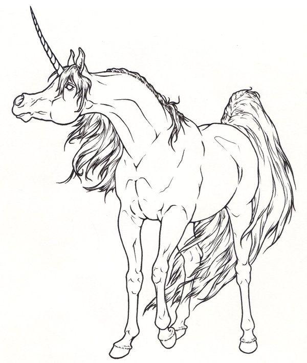 Arabian Unicorn Lineart by ReQuay on DeviantArt | Horse ...