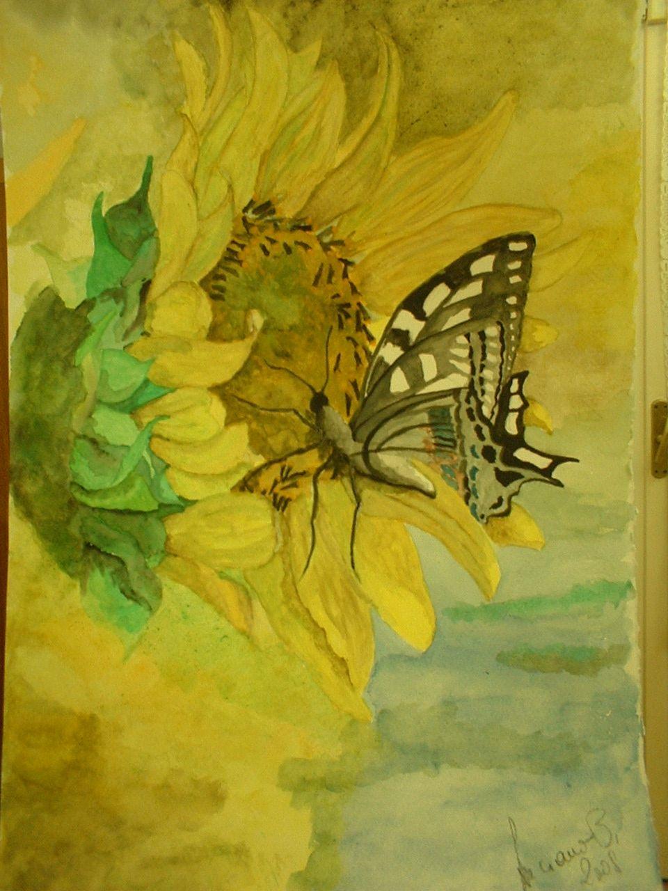 Girasole e farfalla, acquerello