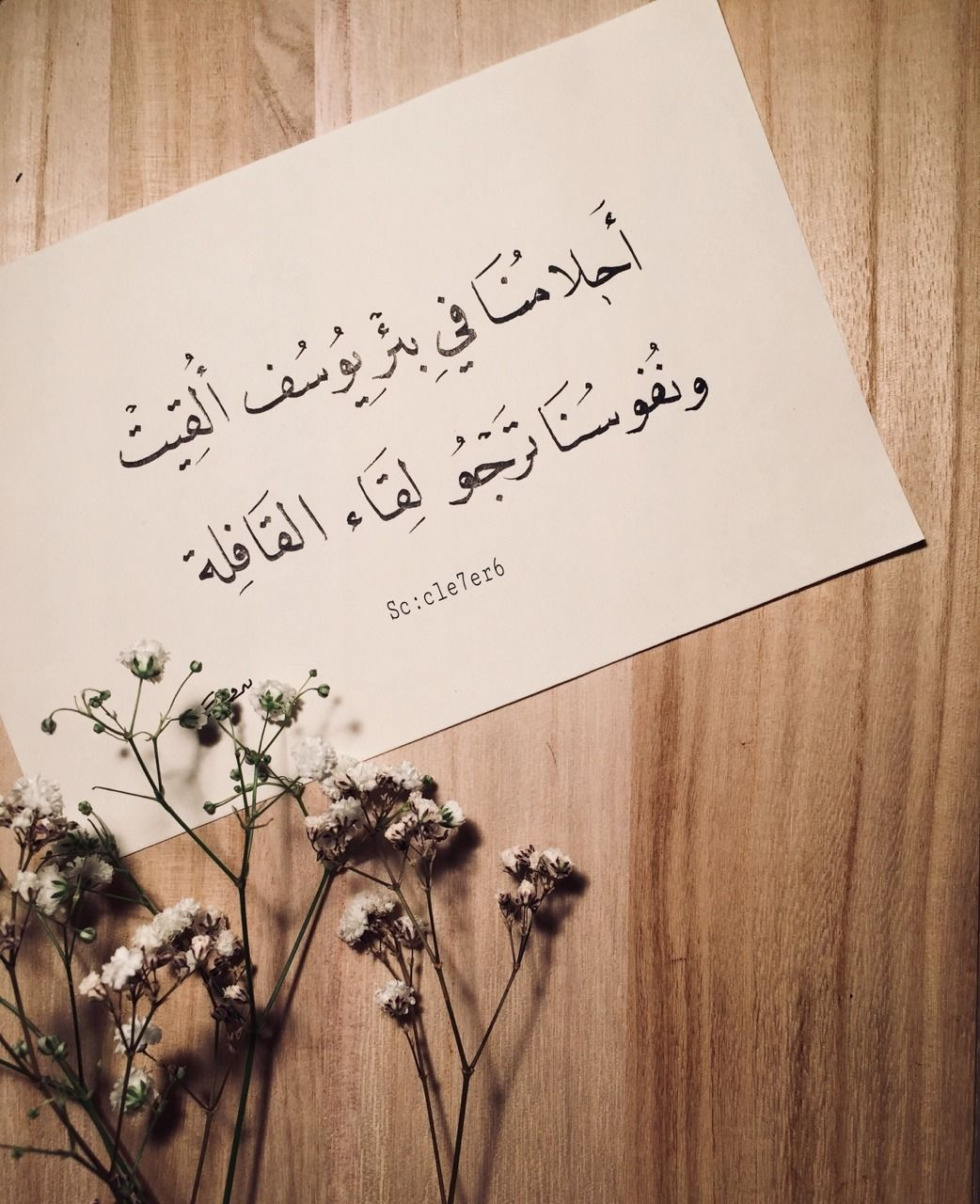أحلامنا في بئر يوسف أ لقيت ونفوسنا ترجو لقاء القافلة Words Quotes Text Quotes Arabic Quotes