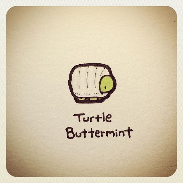 Turtle Buttermint