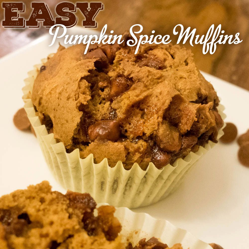 pumpkin muffins with cake mix and cinnamon chips