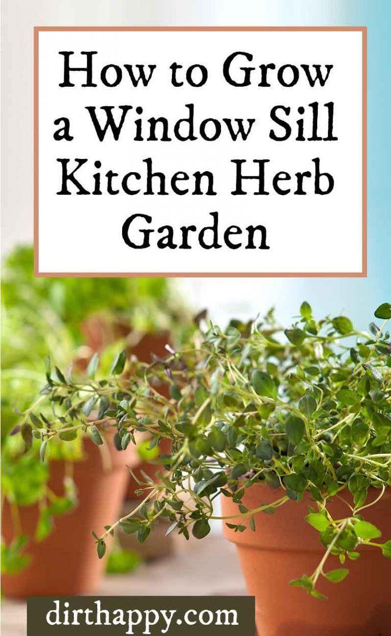 How To Grow A Windowsill Herb Garden For Kitchen Herbs 400 x 300