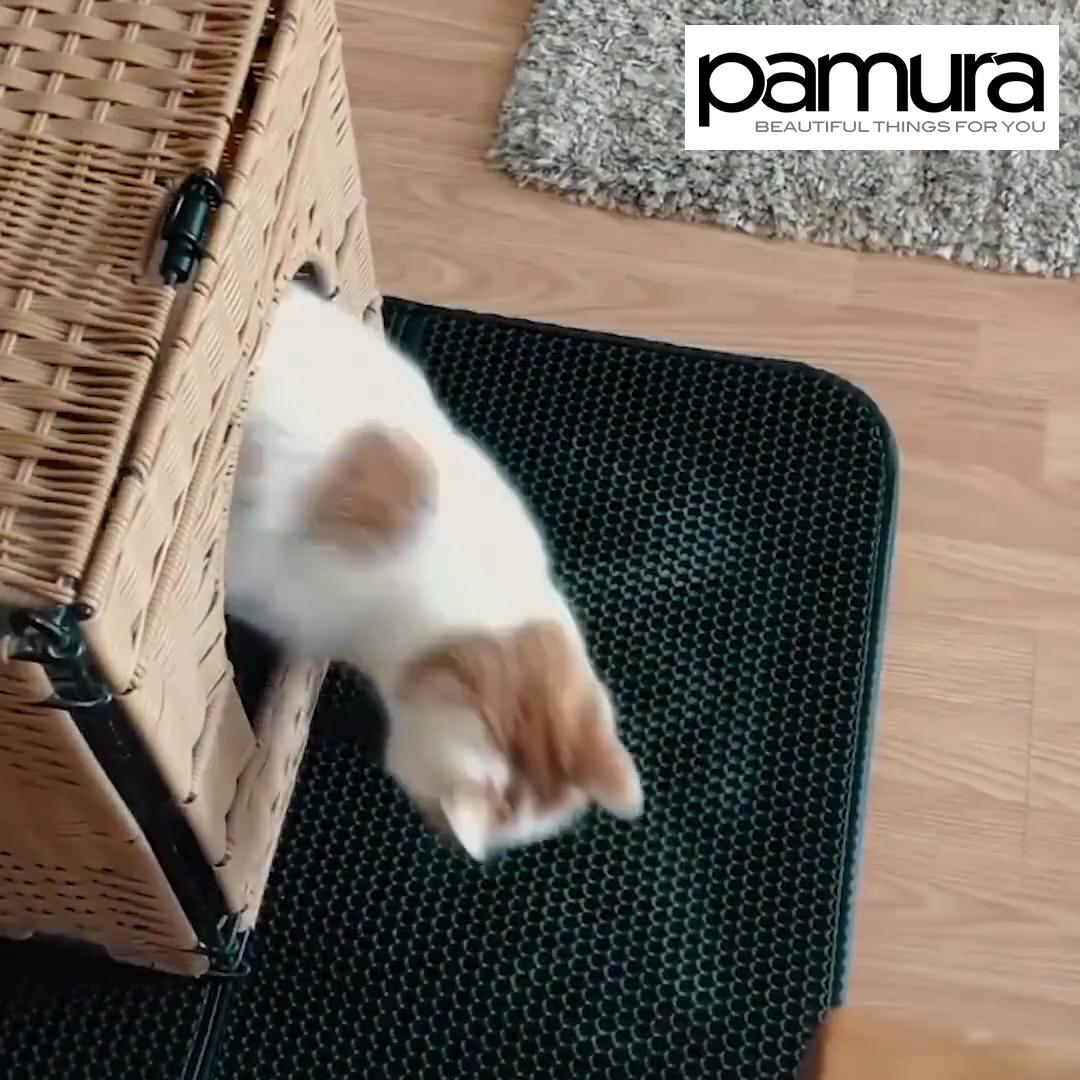 Matty Die Geniale Anti Katzenstreu Matte Video Video Katzenstreu Matte Katzen Klo Katzen